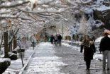«نسخه خاص» برای سلامتی در روزهای سرد