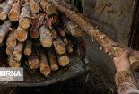 فرمانده انتظامی : ۲۴ تن چوب قاچاق در ارزوییه کرمان کشف شد